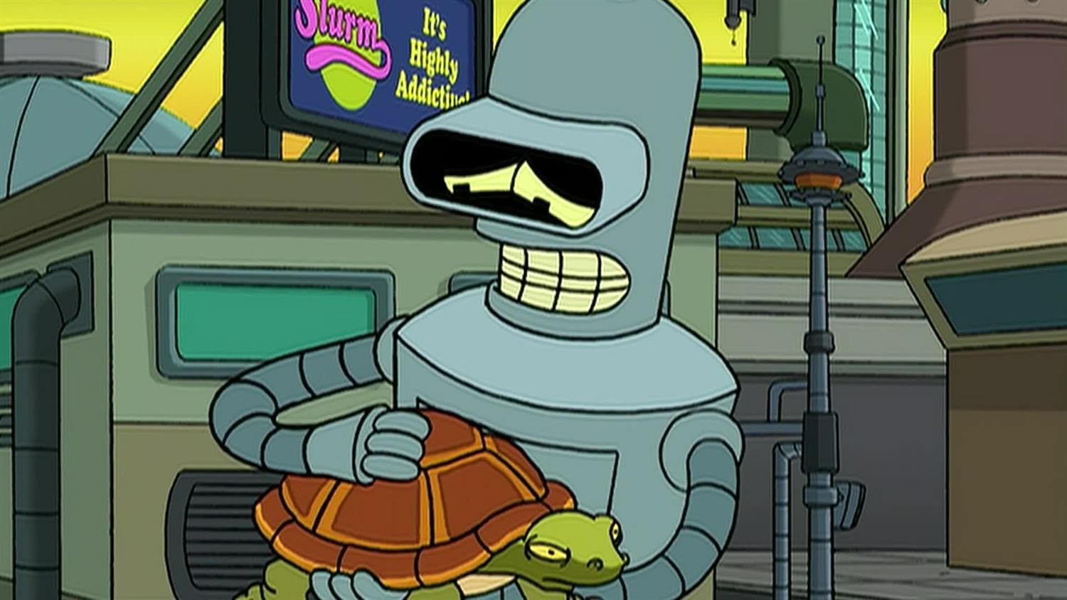 Bender Cares for Turtles